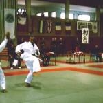 jujitsu1_