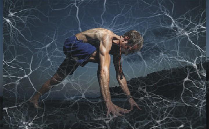 I segreti della fascia nello yoga